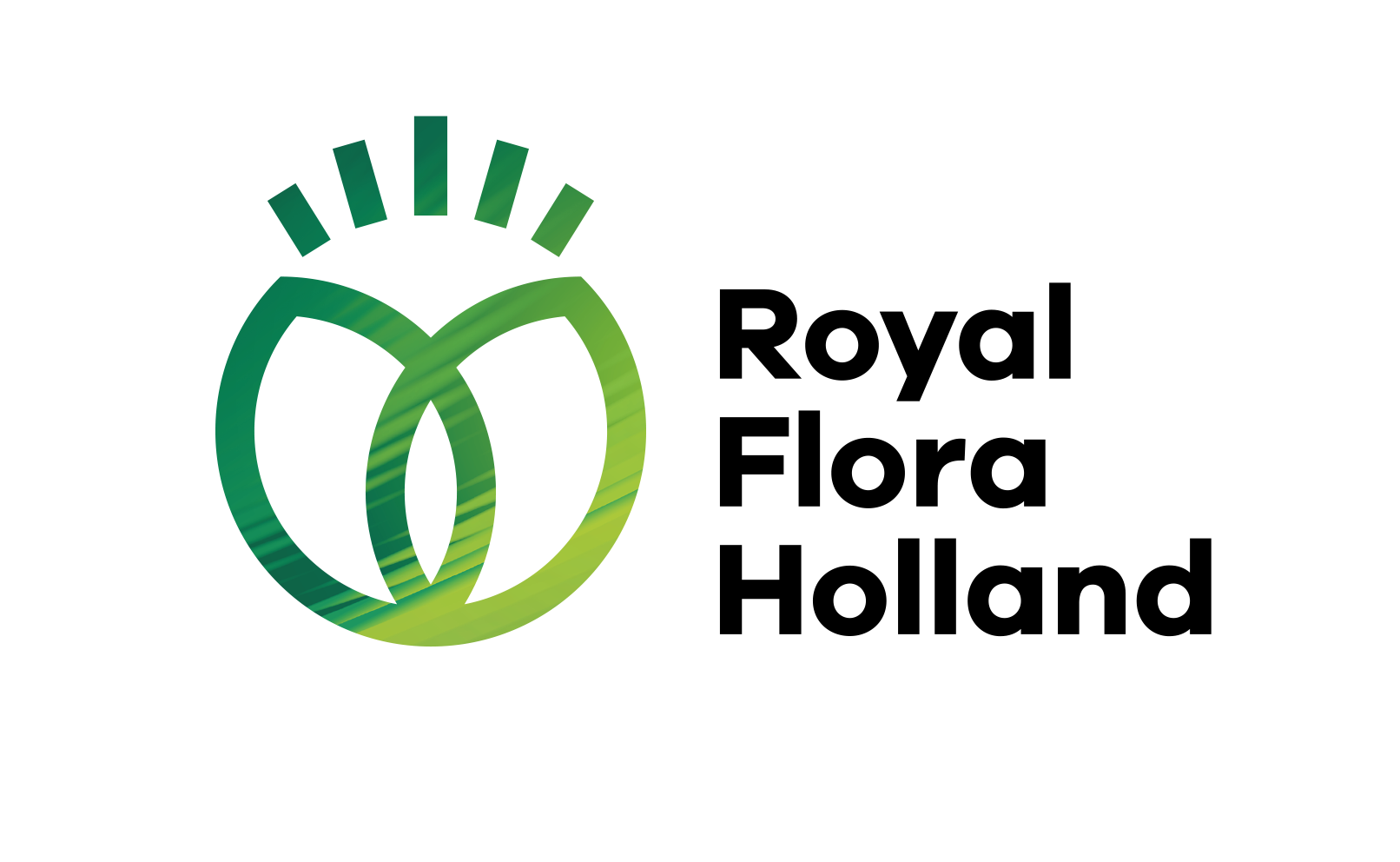 logo of Royal Flora Holland