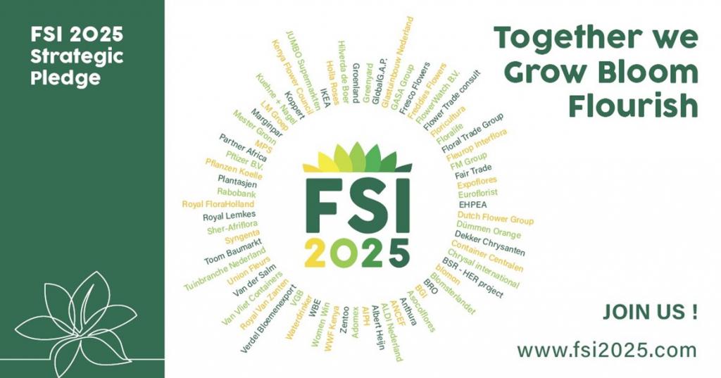 FSI 2025 strategic pledge